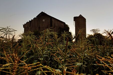 rural homestead in the farm country photo