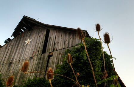 old shack in the Canadian countryside photo