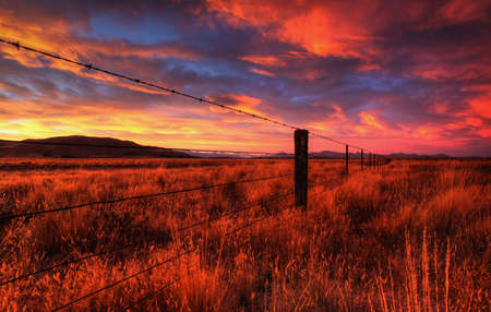 lonely country road landscape in vibrant colors Stock Photo - 9852399