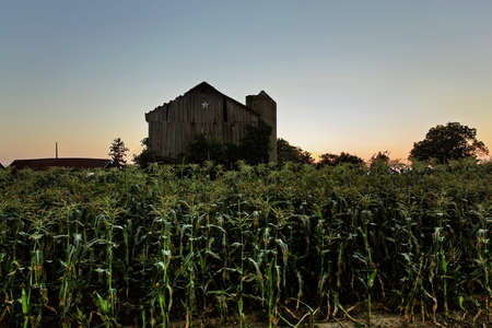 rural homestead in the farm country Stock Photo - 9852469