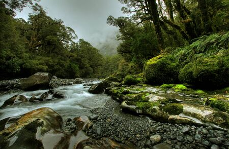 tropical creek, flowing with glacier water photo