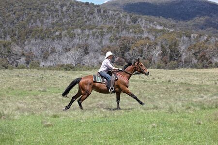 stockman: female rider with horse in the outback Stock Photo