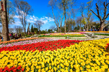 Traditional Tulip Festival in Emirgan Park, a historical urban park located in Sariyer district.Tourists and locals visit and spend time.Istanbul,Turkey.15 April,2017
