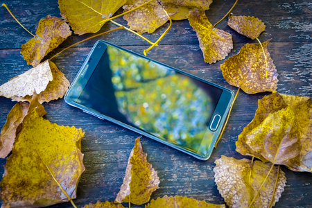 Background texture with old wooden table and top view of big black cell phone inside yellow autumnal leaves folded in the form of a circle.Copy space for editing.