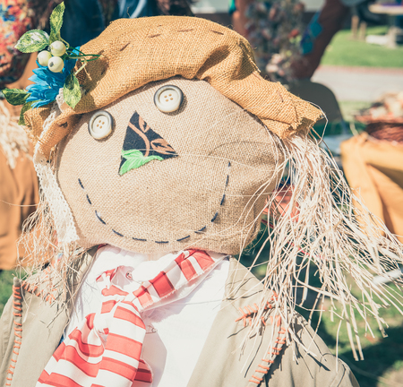 Close portrait view of happy scarecrow doll standing alone
