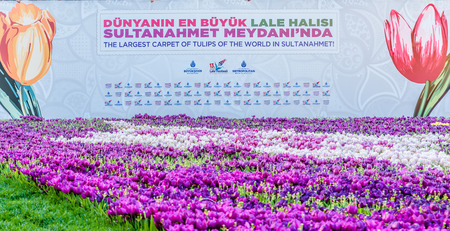 Unidentified people take pictures of Largest Carpet of Tulips of the World in Sultanahmet for tulip festival in Istanbul,Turkey.21 April 2018