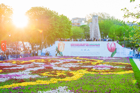 21 April 2018 :- Unidentified people take pictures of Largest Carpet of Tulips of the World in Sultanahmet for tulip festival in Istanbul,Turkey. Editorial