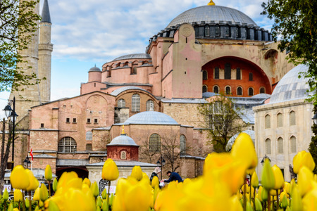 Traditional tulip Festival in Sultanahmet Square Park with view of Hagia Sophia,a Greek Orthodox Christian patriarchal basilica (church) on background and colorful tulips on foreground.ISTANBUL,TURKEY- APRIL 4,2017 Editorial