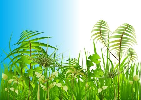 rainforest background: vector nature