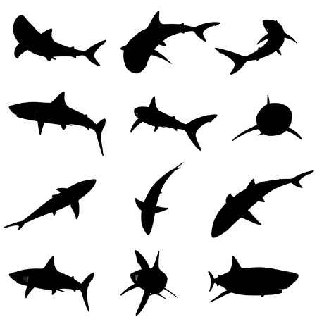 seawater: vector shark silhouette set