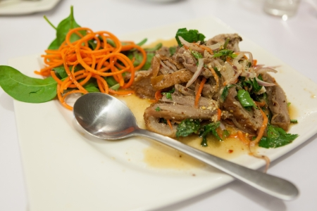 Thai Duck Salad Plate with Sauce Stock Photo