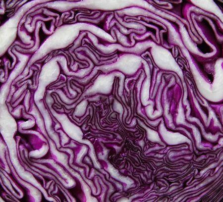 halved  half: cut fresh purple cabbage