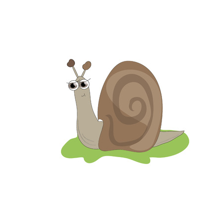 invertebrate: The image is fun, colorful, cute snail on green grass. Illustration