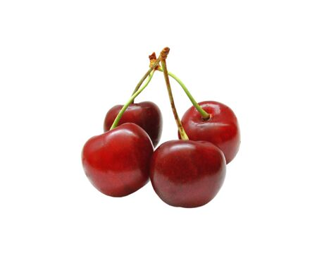 A few sprigs with berries cherries on white background photo