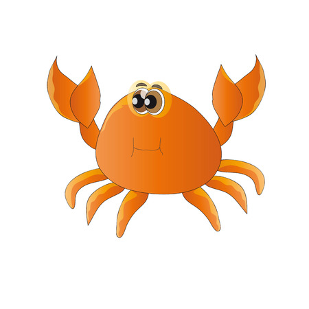 fantasize: La imagen del habitante del mar - cangrejo en el fondo blanco