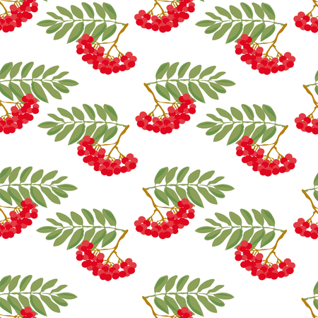mountain ash: Seamless autumn pattern. A pattern made from the ripe berries of mountain ash and green leaves, on a white background.