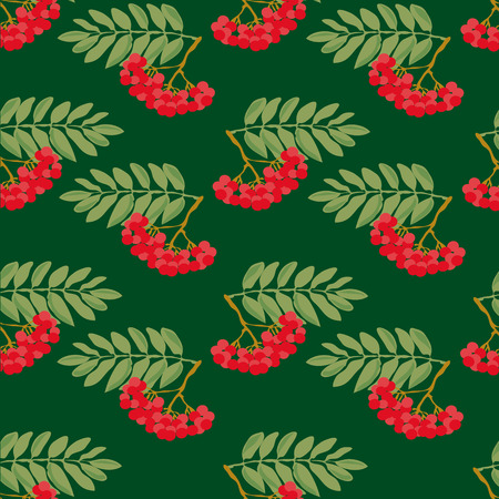 ashberry: Seamless autumn pattern. A pattern made from the ripe berries of mountain ash and green leaves on a green background.