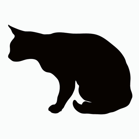 arched: Black silhouette of a large adult cat isolated on a light background. Cat sitting in wait for their prey arched his back.
