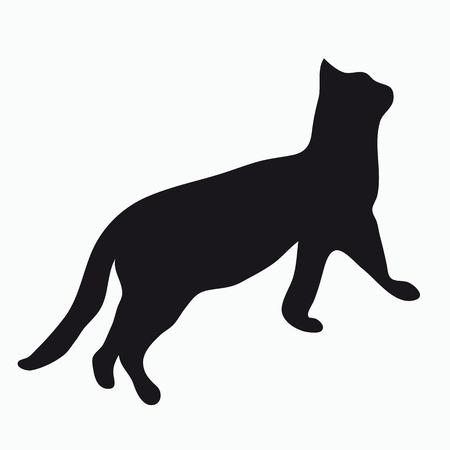 cat silhouette: Black silhouette of a large adult cat isolated on a light background. The cat reaches up and prepares to jump.