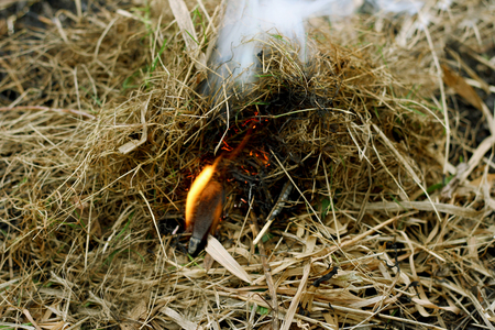igniting: Autumn dry grass close up. A large defocused lit a match, igniting the grass.