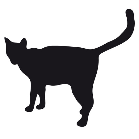 goes: Black silhouette of a large adult cat isolated on a light background. The cat goes and waits for prey. Stock Photo