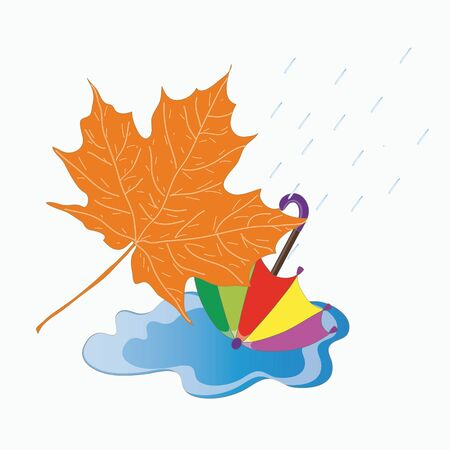 puddle: Vector illustration. Autumn picture. Image will fall rain, puddle, fallen maple leaf and bright colored umbrella. Illustration