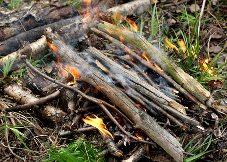 ignited: The fire, which ignited in the forest. Collected dry twigs, piled in a heap. Kindled a fire using dry twigs, sticks and firewood. Stock Photo