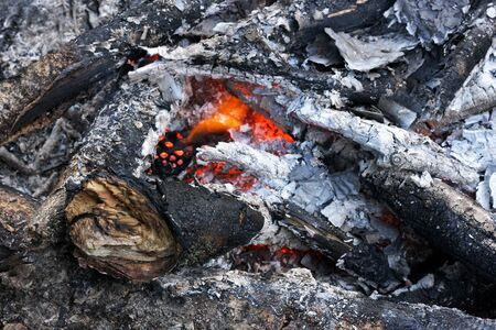 charred: The place where lit a bonfire. Charred branches, ash, embers and fading flame.