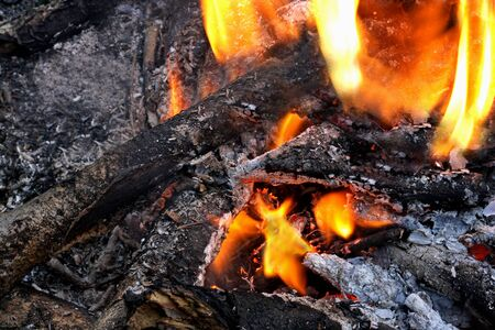 charred: The place where lit a bonfire. Charred branches, ash, embers and flame.