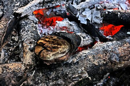 Fireplace. The remains of the fire: coals, ashes, embers, twigs, the charred sticks.