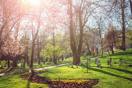 herzegovina: Spring bloom in Sarajevo, Bosnia and Herzegovina Stock Photo