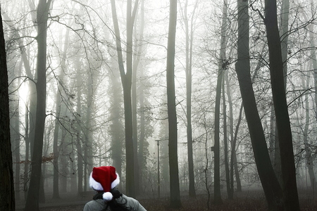 Santa Claus running through the forest in the fog Stock Photo