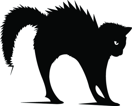 Black cat graphic design illustration. Ilustracja