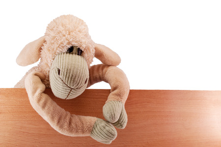 keeps: toy sheep beige sits on the board fence keeps isolated Stock Photo