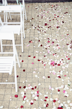 path strewn with rose petals at the wedding ceremony