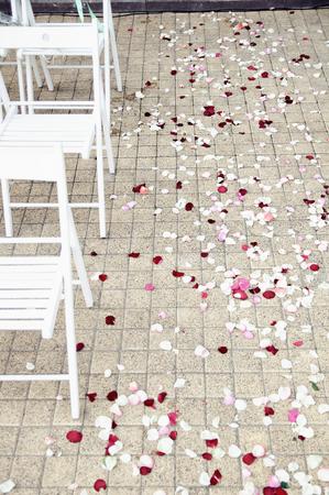 路径散落在婚礼上与玫瑰花瓣