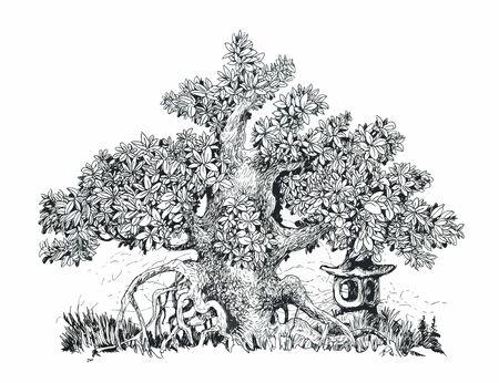Japanese bonsai and stone lantern.Ink drawing.