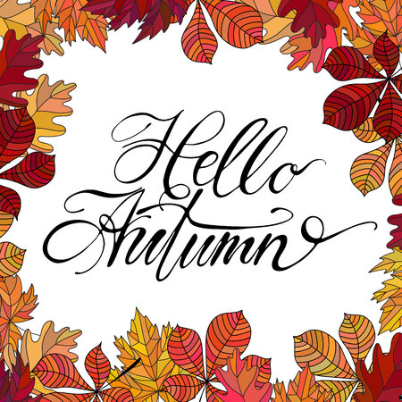 Hand drawn vector lettering. Words Hello Autumn by hand with autumn leaves on background. Vector illustration.