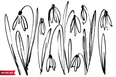 Herbs and flowers outline image Vectores