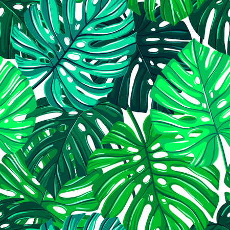 Vector seamless pattern with tropical leaves. Monstera leaves texture. Jungle floral repeatable background. Botanical realistic motif. Ilustração