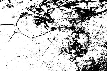 Distressed overlay texture of rough surface, tree shadow, organic shapes. Grunge background. One color graphic resource