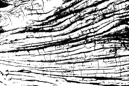 Distressed overlay texture of rough surface, old tree stump with cracks, rings on tree. Grunge background. One color graphic resource. Vector Illustration