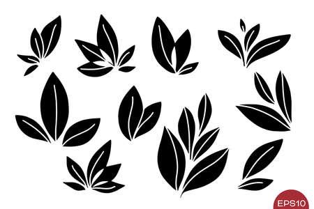 Vector set of leaves compositions. Floral elements. Various monochrome leaves isolated. Illusztráció