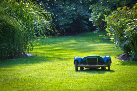 lawn mower: Robotic Lawn Helper Stock Photo
