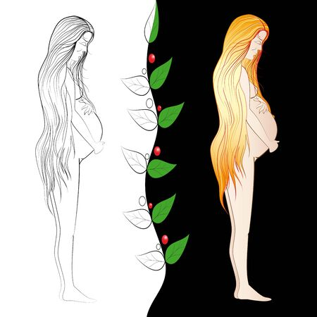 なでる: 妊娠中の女性は、彼女の大きなおなかをなでます。輪郭と色のイメージ。