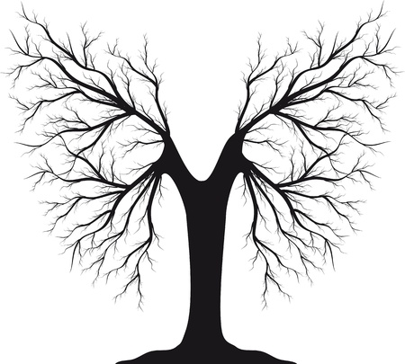 Black silhouette of a tree without leaves Stock Vector - 13329132