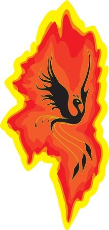 fenix: Bird the phoenix rising from the flames Illustration