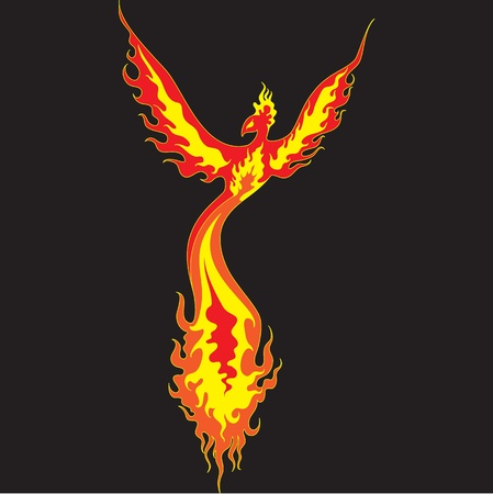 Fiery Phoenix with widely spread wings  The image can be used for tattoo