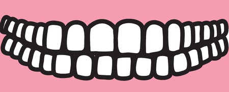 permanent: Illustration of the thirty-two permanent teeth