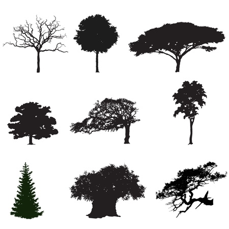 set of black silhouettes of trees Vector